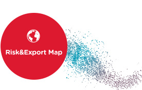 Risk&Export Map